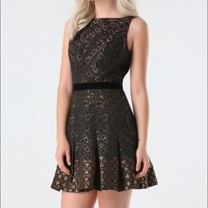 Bebe Dress (NWT) Lina Jacquard Flared Dress
